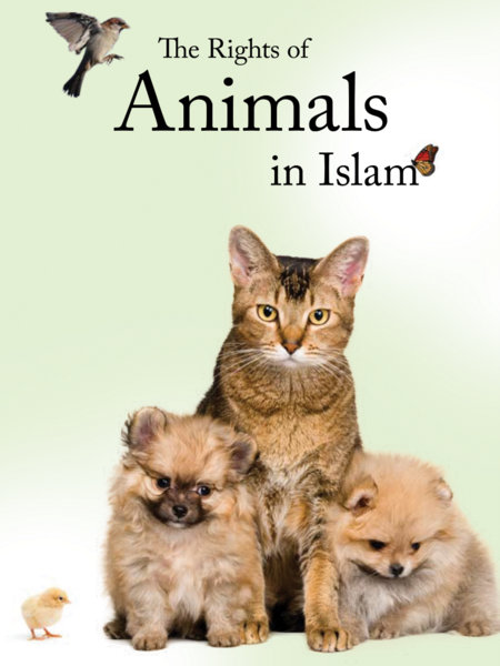 M63 - animal welfare in Islam - Fanar